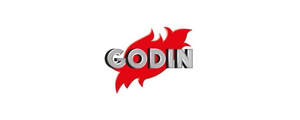 компания Godin